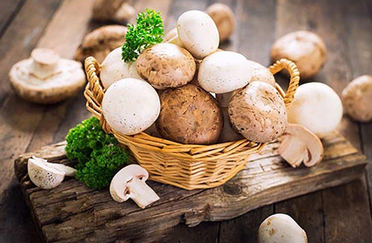 چه کسانی نباید قارچ مصرف نمایند؟