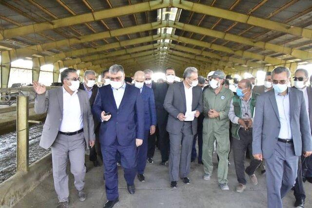 بازدید وزیر جهاد کشاورزی از مجتمع کشت و صنعت بیدمشک سربیشه