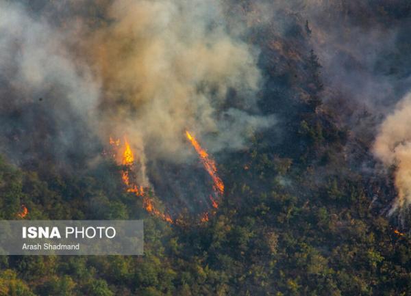 تغییرات اقلیمی عامل مهم آتش سوزی زمستانه جنگل های شمال کشور