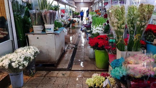 آرامش به بازار گل محلاتی برگشت، خسارت آتش سوزی به غرفه داران تنها مالی بود